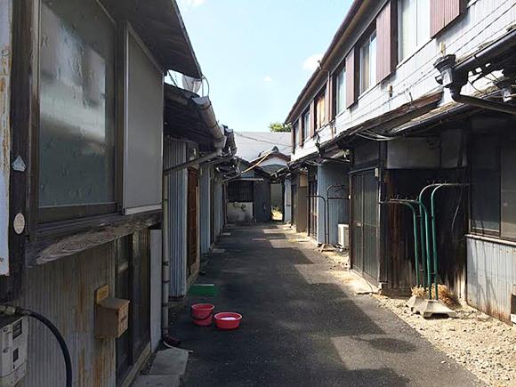 orinotawashi1812_tsushima.jpg