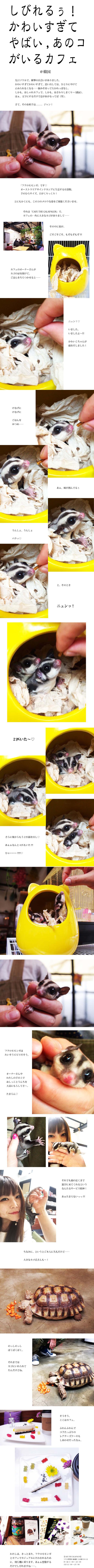 tomako20160427.jpg