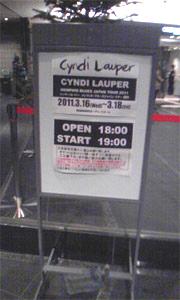 Cyndi1.jpg