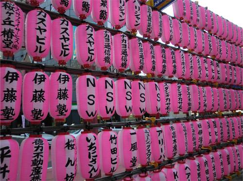 20130314sakura.jpg