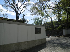20130411sakura_c.jpg