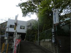 20130422sakura_c.jpg