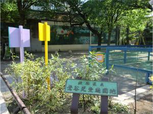 20130426sakura_f.jpg