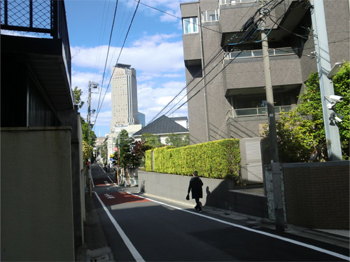 20130502sakura_a.jpg