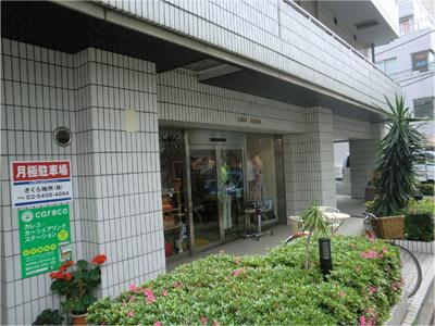 20130513sakura_c.jpg