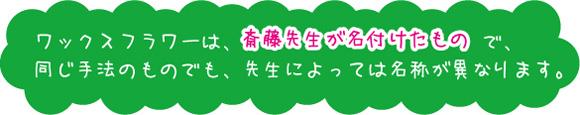 hana_t01.jpg