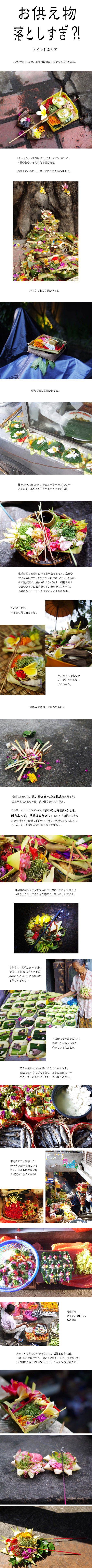 tomako160818.jpg