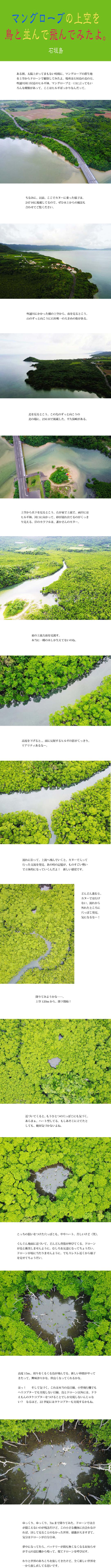tomako170907.jpg
