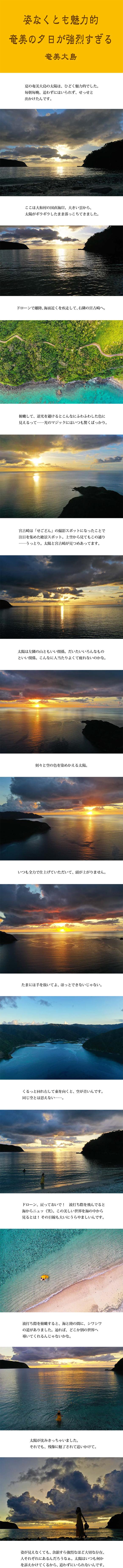 tomako191009.jpg