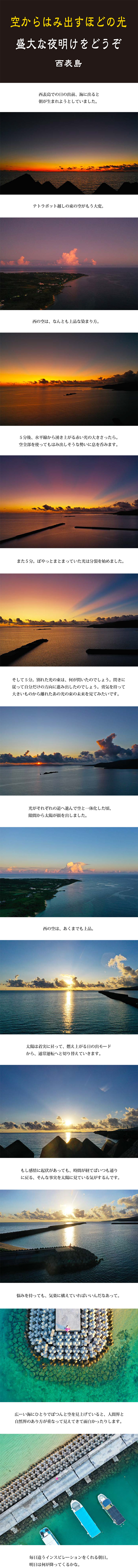 tomako191120.jpg
