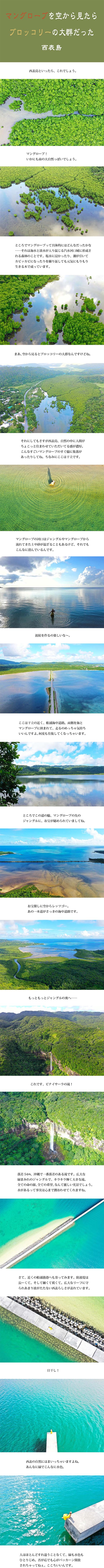 tomako191127.jpg