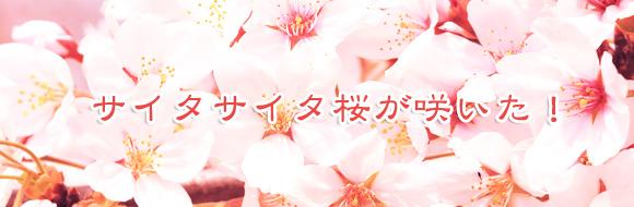 201304_banner.jpg